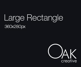 Large Rectangle Web Banner