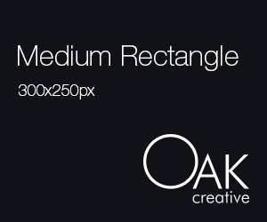 medium rectangle web banner sizes 300x250