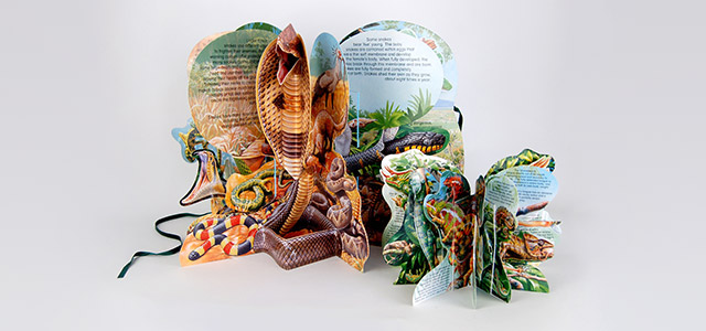 Snakes pop up book design