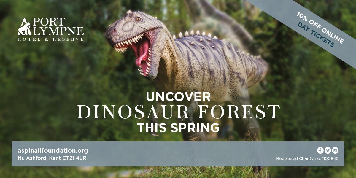 Port Lympne Dinosaur Forest Artwork Designed by Oak Creative