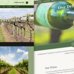 Biddenden Vineyards Web Design and Development by Oak Creative